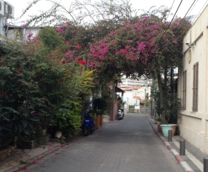 Best Shopping Neve Tzedek