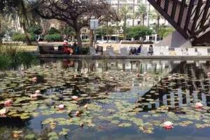 Rabin Square Pond