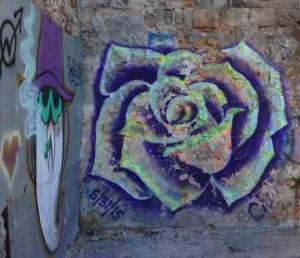 Tel Aviv-Grafitt & Streetart -flower