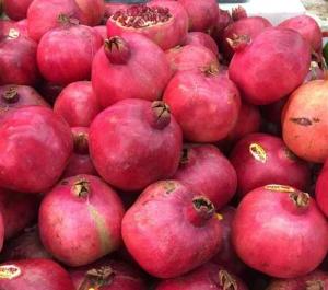 rosh-hashana-5777-fresh-pomegranates