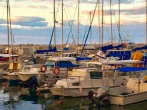 old-jaffa-port